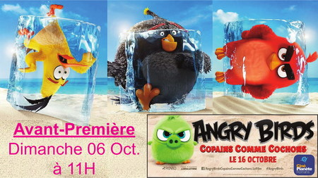 AVANT-PREMIERE ANGRY BIRDS